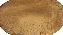 Djembe Drum Replacement Skin - Small-Medium