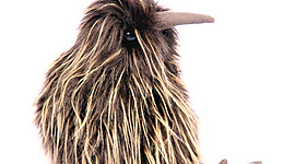 Plush Kiwi - large